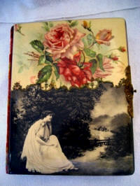Antique Victorian celluloid photo album lady in the country large roses